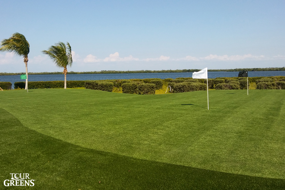 Large putting green installed in the backyard of a lakefront home