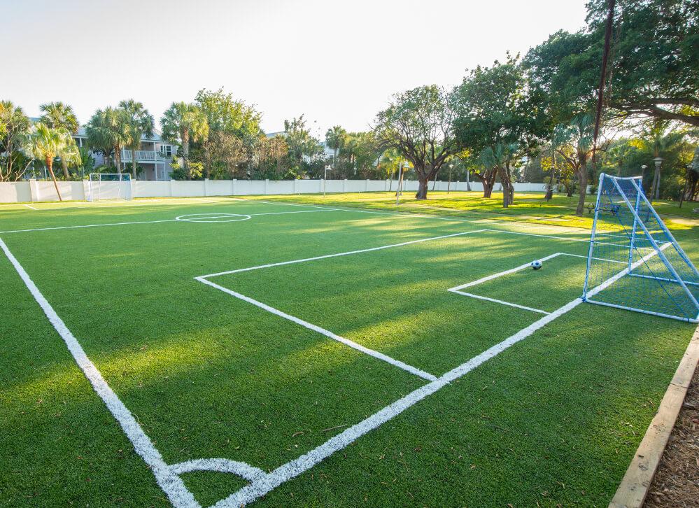 XGrass Open Play Field Turf
