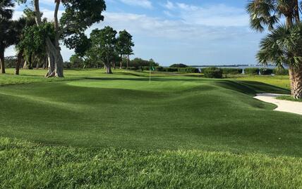 XGrass Golf Greens Turf
