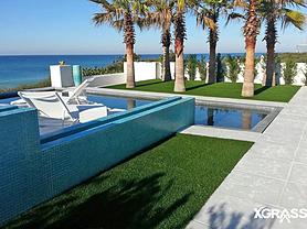 Backyard swimming pool in Florida with artificial lawn