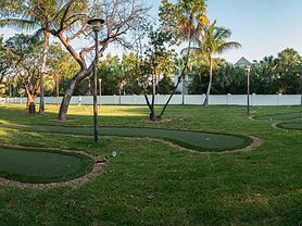 Backyard Putting Course